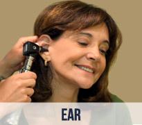 Ear Doctor Naples, Florida